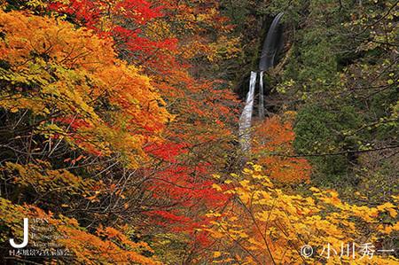 回顧の滝HP.jpg